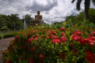 Socha Buddhy na konci parku