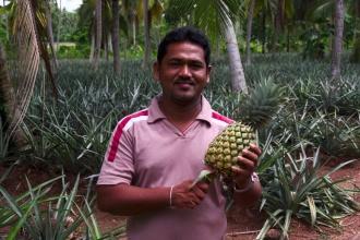 Čerstvý ananas, který jsme si zanedlouho dali