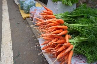 Prodej zeleniny u silnice.