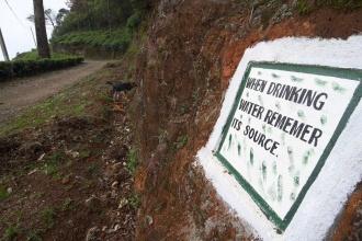 Sestup skrz čajovníky dolů do Nuwara Eliya.