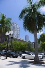 Ulice Miami.