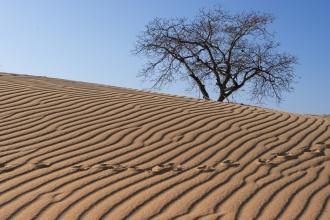 Oblast White Sands, asi 20km severně od Mui Ne.