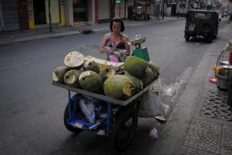 Prodavačka jackfruit (plody chlebovníku) v Saigonu.